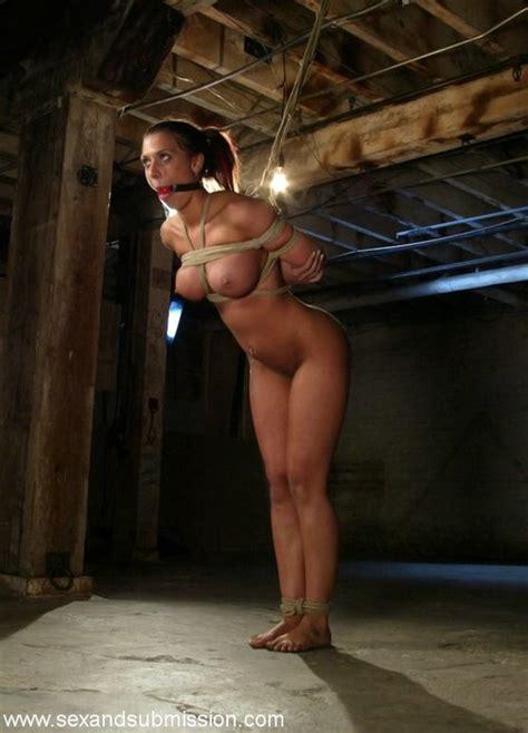 Rachel starr tied porn videos jpg 504x700